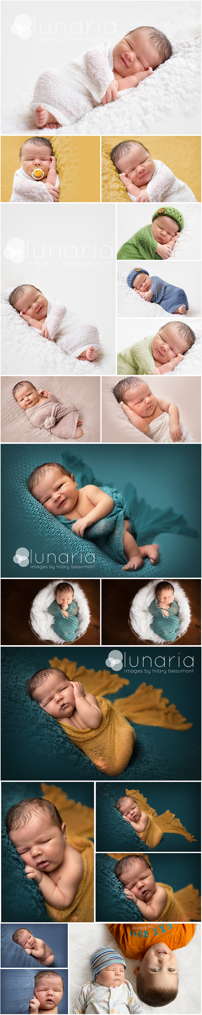 newborn boy portrait collage shot by Hilary Beaumont of Lunaria Photography in Whitby Ontario.